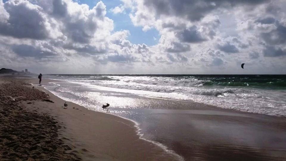 Bild für Drei Tage Sylt: Sonne, Regen und die geheimnisvolle Pantoffelschnecke